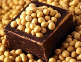 Proteine di soia, le migliori da assumere e perche'