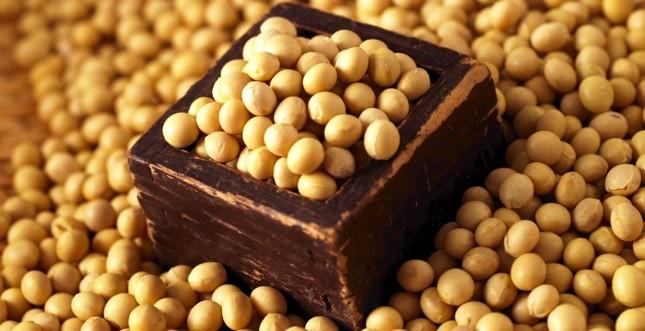 proteine di soia